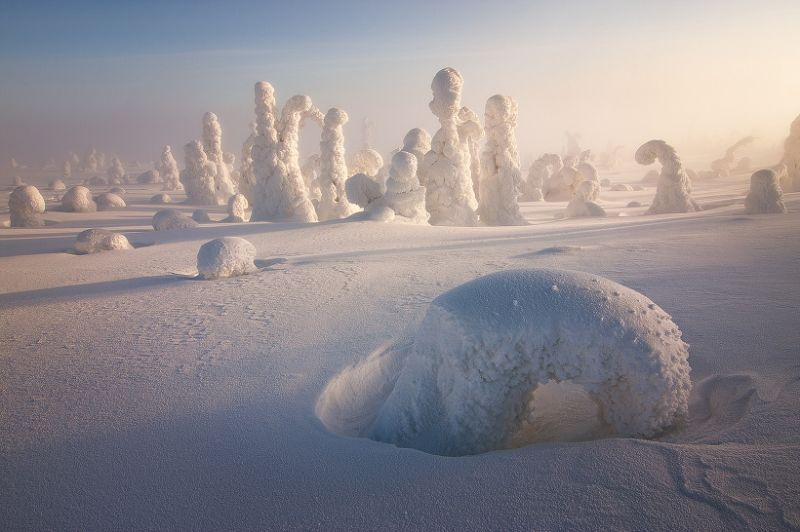 Penjaga ini sebenarnya adalah pohon - pohon yang tertutup oleh es