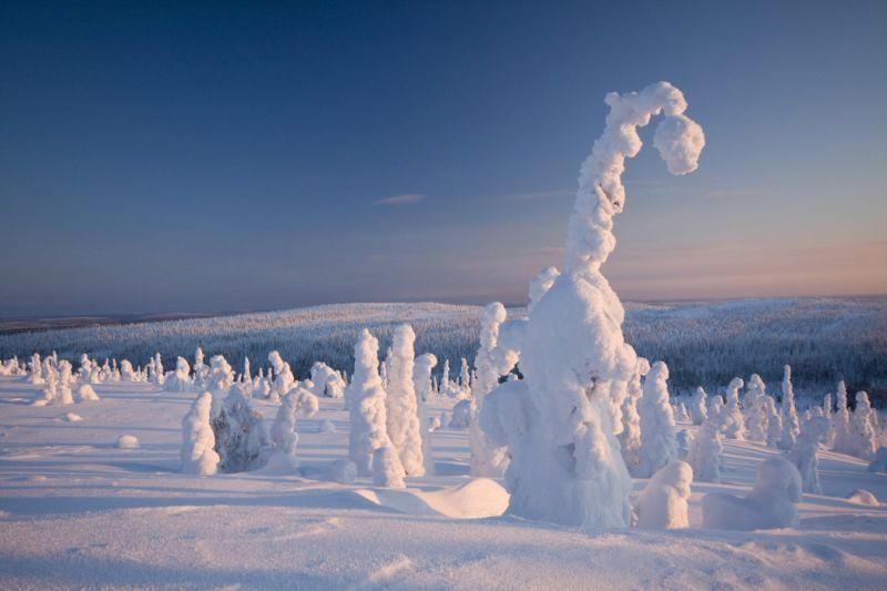 Para penjaga kutub utara