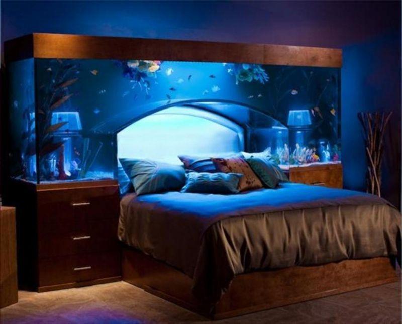 Tidur Dibawah Akuarium