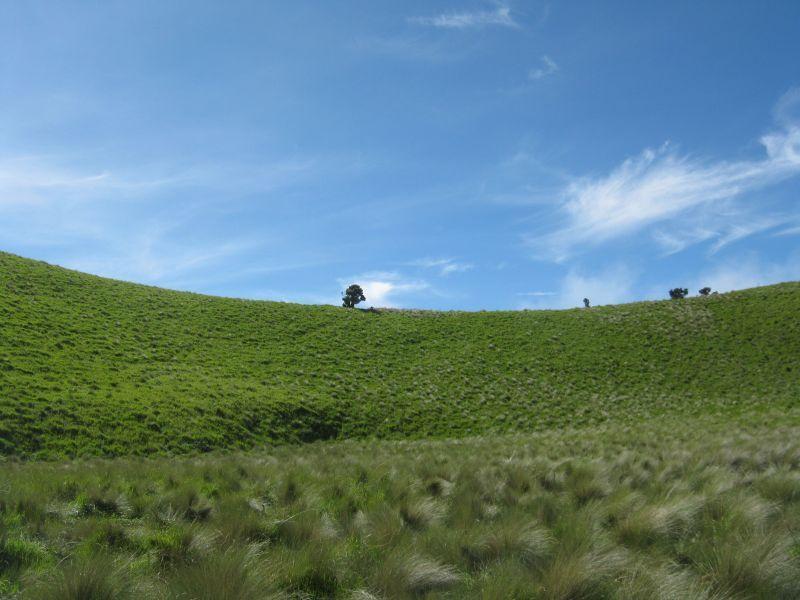 Bukit Teletubies Merbabu