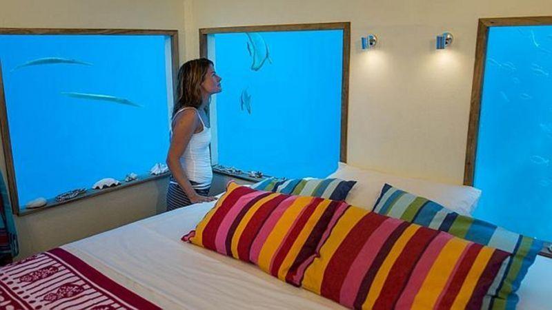 Di hotel ini kamu bakal lihat ikan berseliweran di jendela kamarmu!