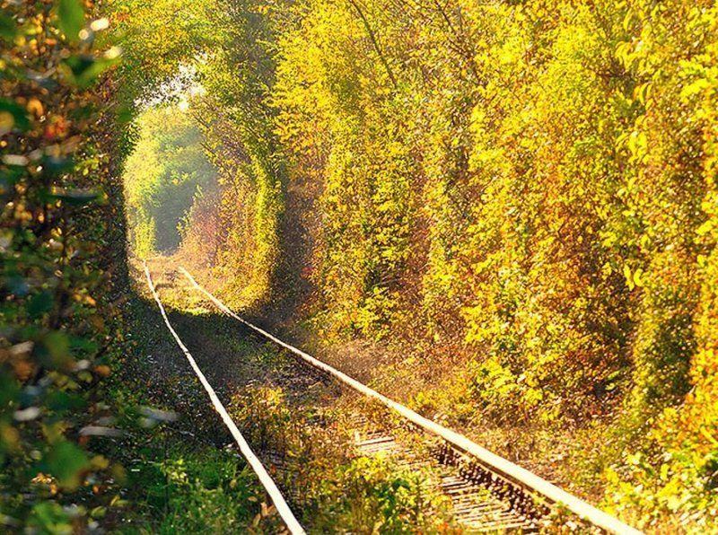 Tunnel of Love di pagi hari