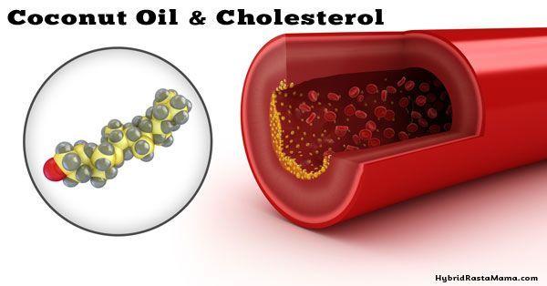 Menurunkan kadar kolesterol