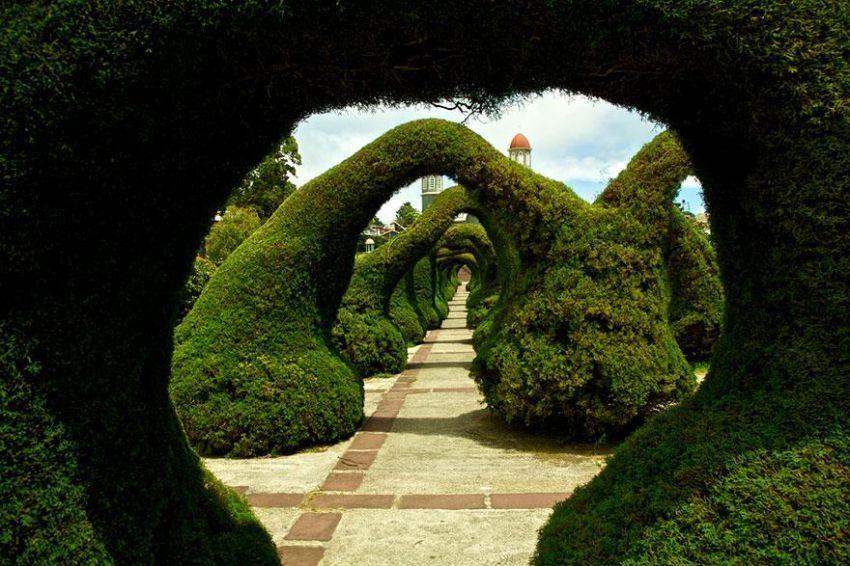Taman yang unik