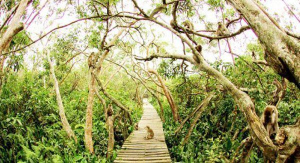 Pulau Kaget, Kalimantan Selatan