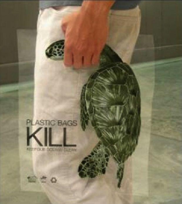 Plastik membunuh kura- kura