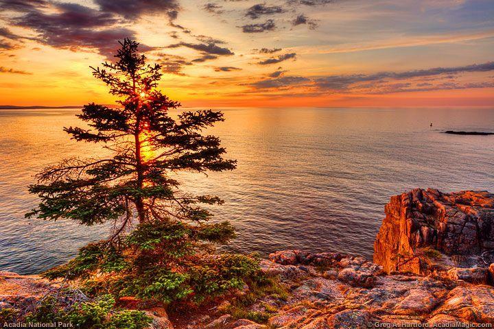 sunrise di salah satu sudut acadia