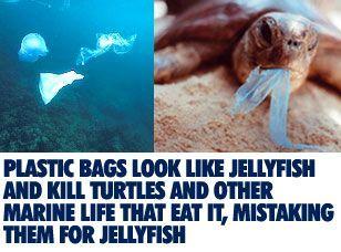 jangan boros plastik