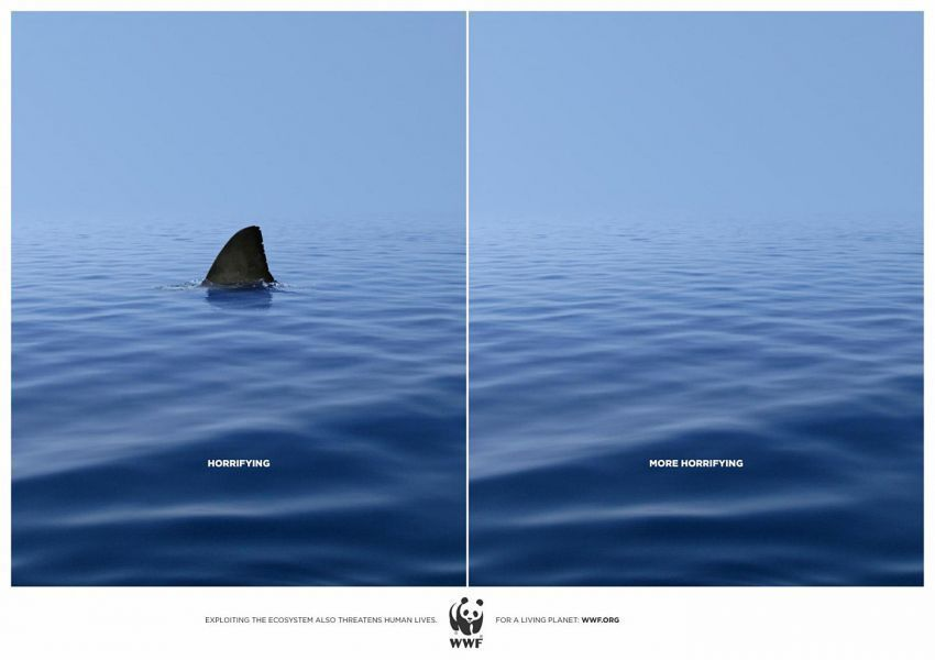 Jagalah keseimbangan ekosistem laut