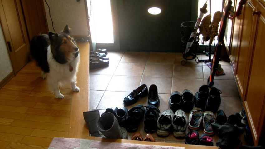 Lantai yang ada sepatunya adalah soto (dunia publik), lantai yang lebih tinggi adalah uchi (ruang privat)