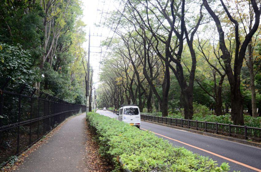 bikin adem jalan dan lingkungan sekitar