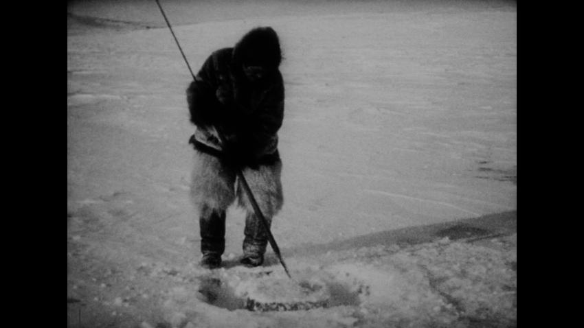 film nanook of the north