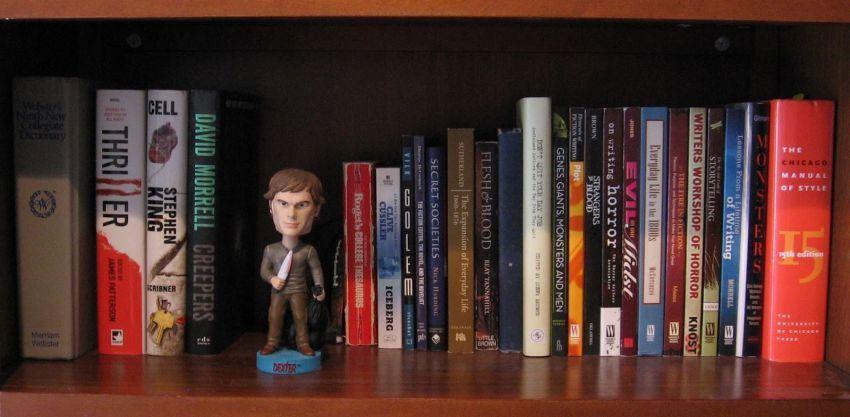 Koleksi bukumu menumpuk