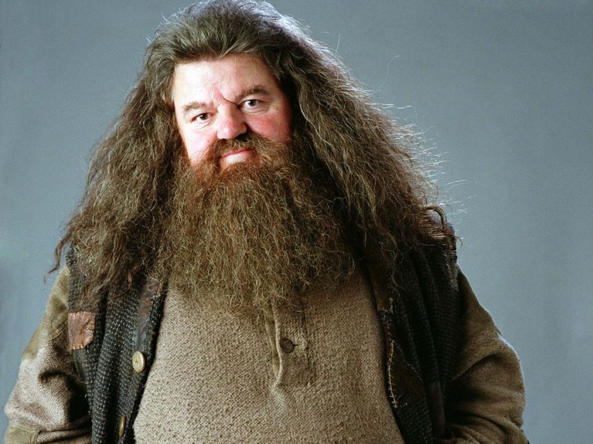 Malah jadi Hagrid