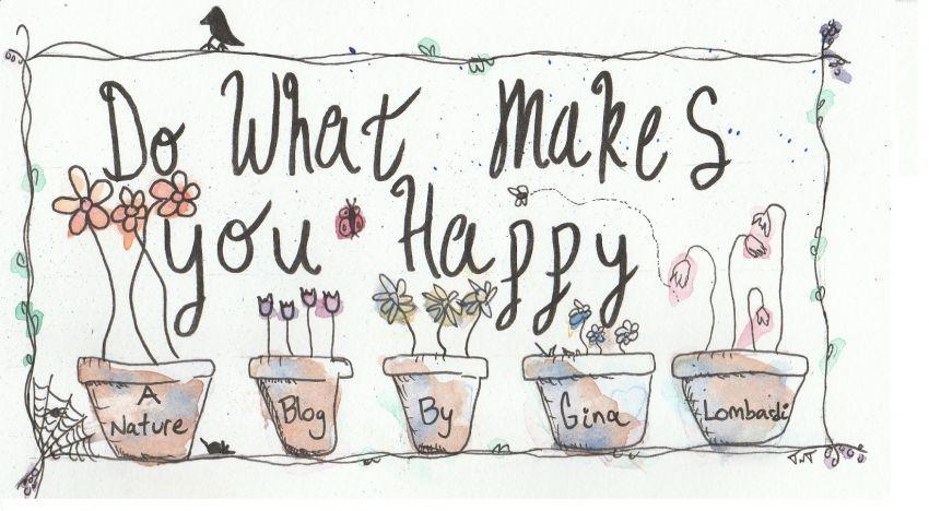 Lakukan sesuatu yang membuatmu bahagia