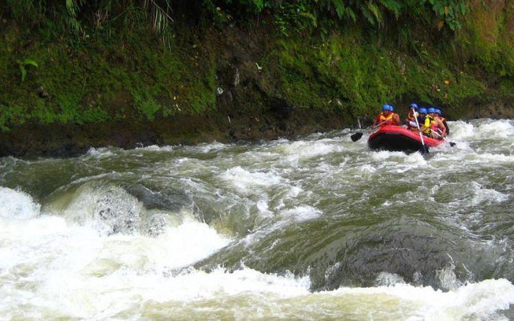 Menyusuri Sungai Alas.