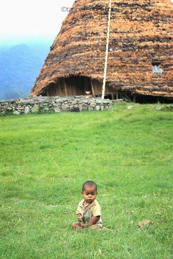 Anak kecil yang bermain di halaman