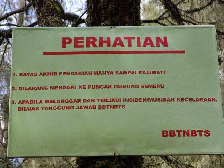 Kalimati adalah titik terakhir pendakian