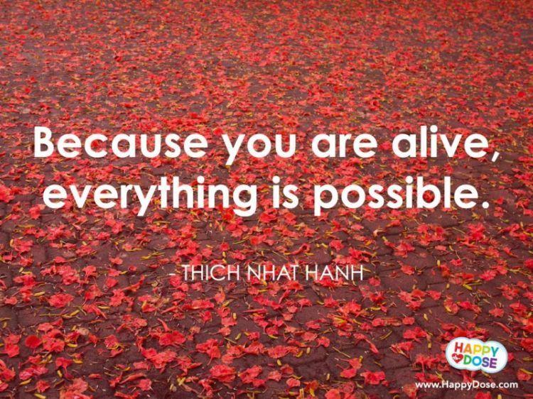 hidup itu penuh kemungkinan