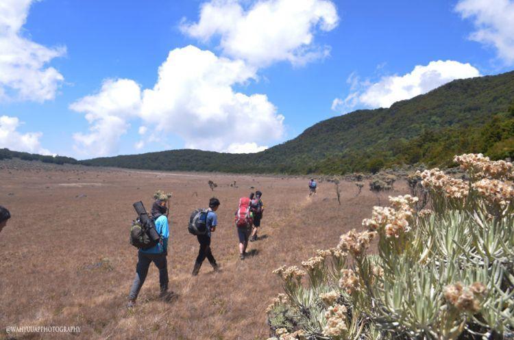 Alun-alun Surya Kencana Gunung Gede