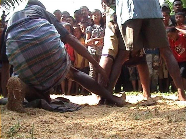 Malanca, tradisi adu betis di Bone