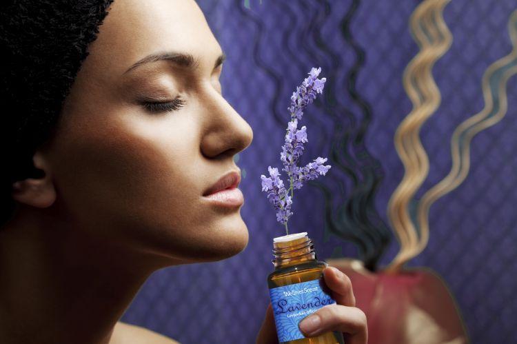Aroma lavender bisa menenangkan kamu