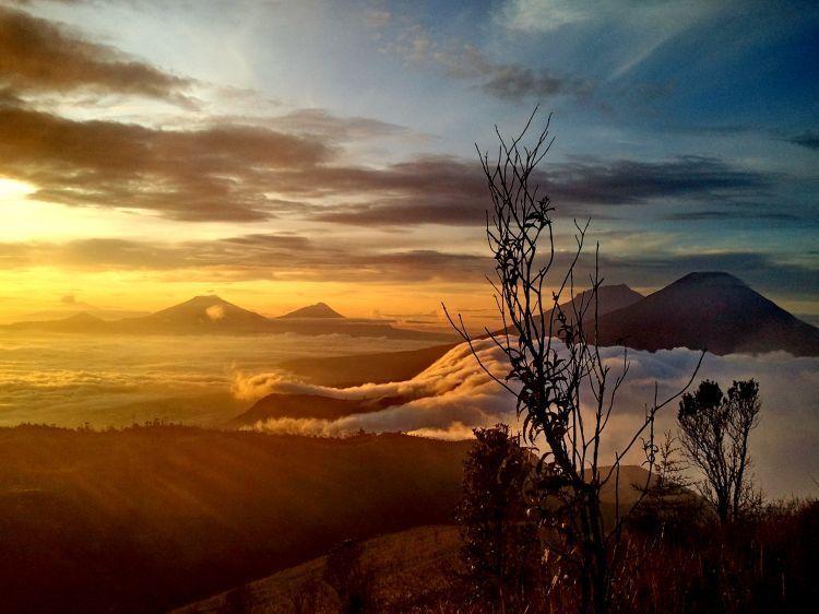 Gold sunrise di bukit sikunir