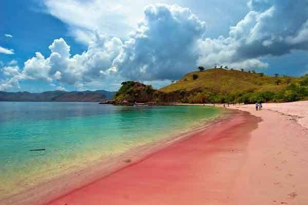 Pantai berwarna feminin