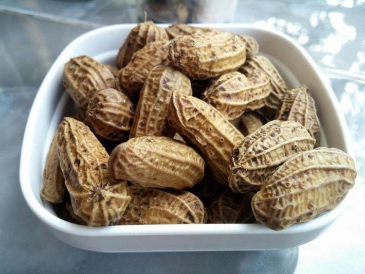 kacang presto