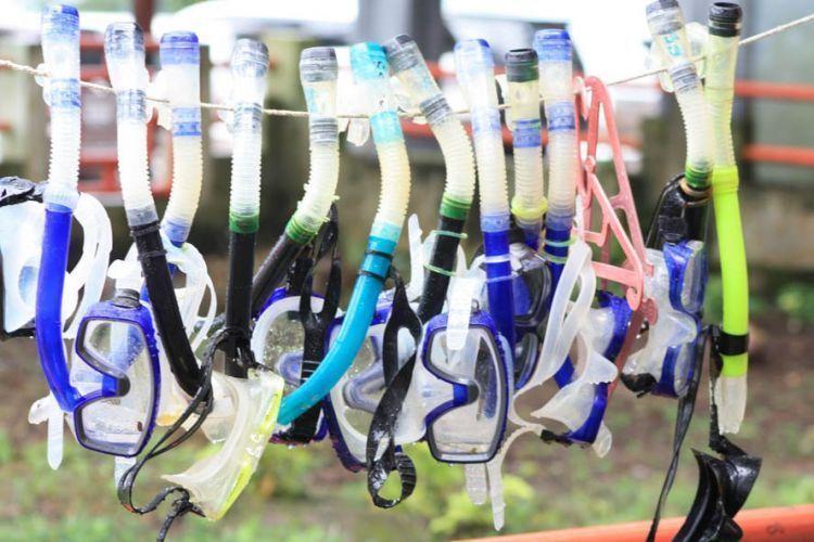 Bersihkan dulu peralatan snorkeling sewaan