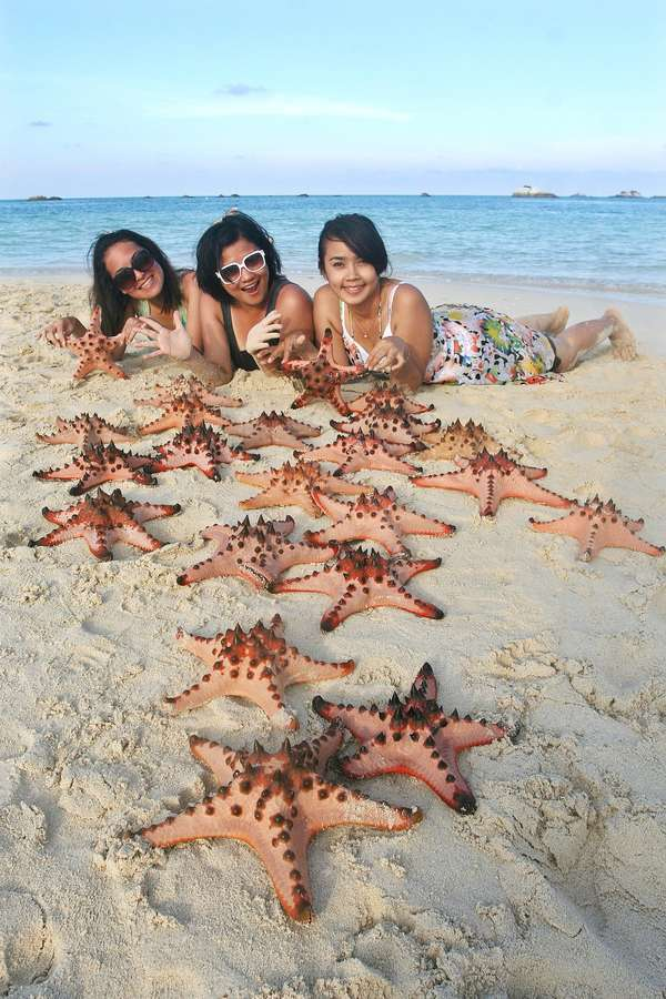Bintang laut di pantai pasir