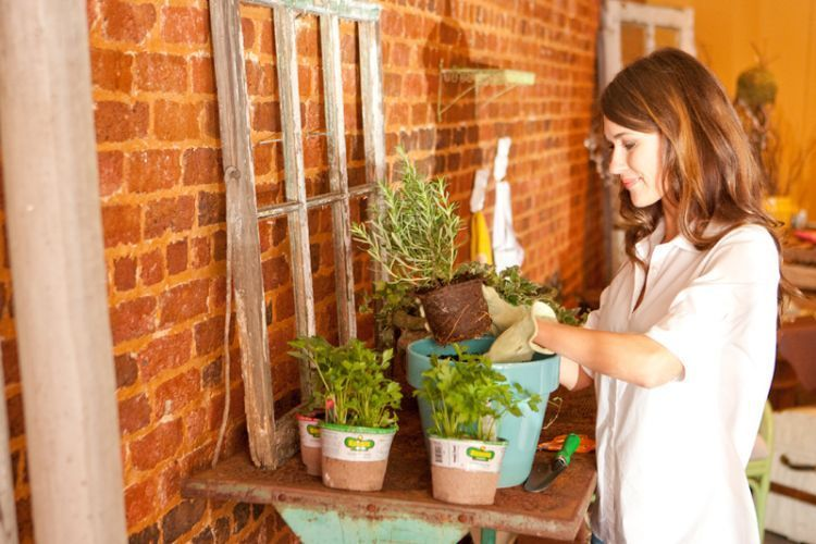 Berkebun bisa memperat keluarga