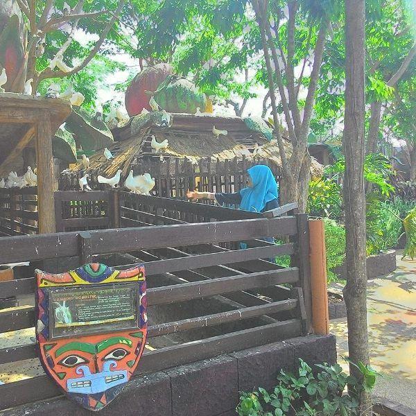 Bermain bersama burung-burung di Mazola (dok. pribadi)