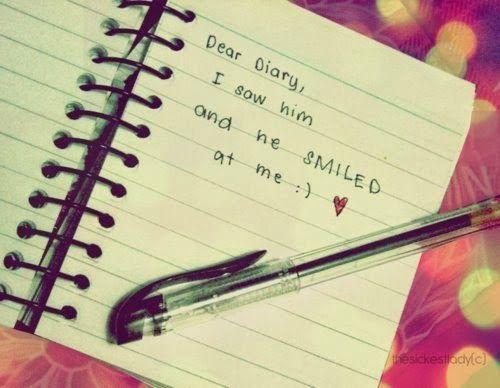 nulis diary