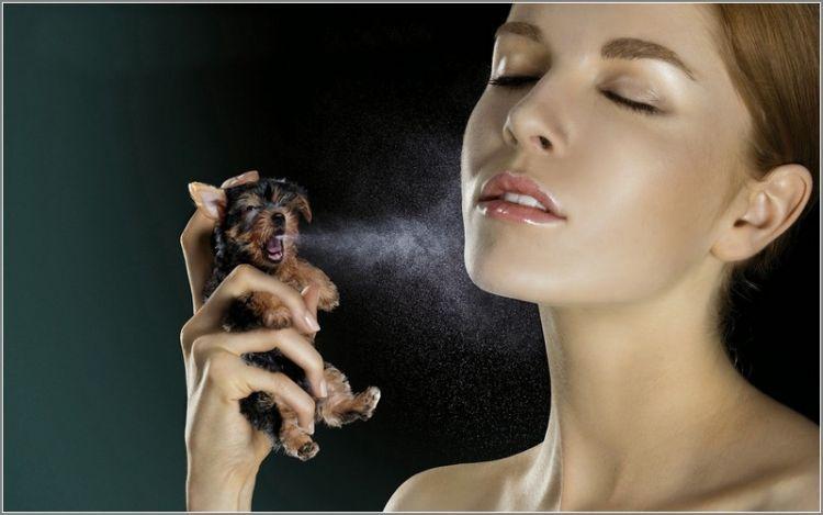 Jangan pakai parfum berlebihan