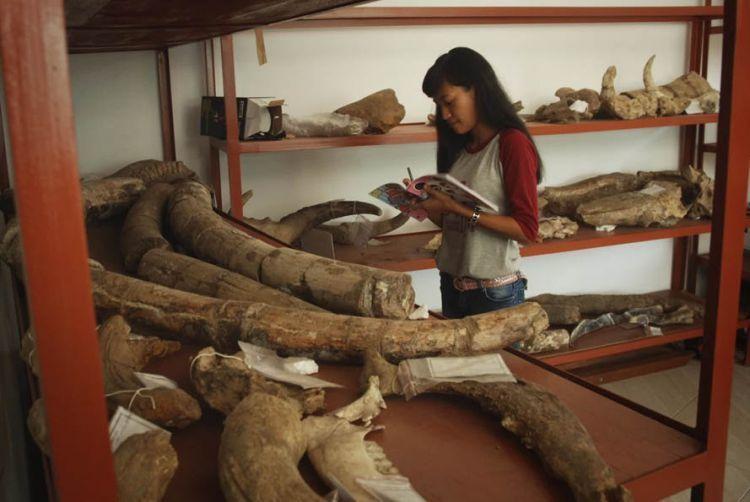Museum Patiayam Kudus