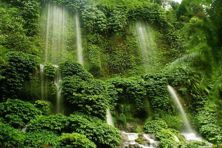 Perpaduan lebatnya pohon dan segarnya air terjun benang kelambu