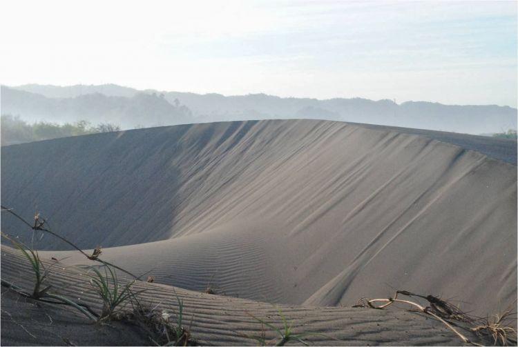 Gumuk pasir ini kerap kali dijadikan lokasi pemotretan. Bahkan arena sand boarding.