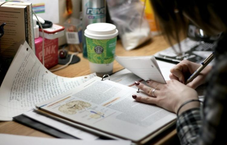 Fokusmu pada ilmu yang bermanfaat, nilai itu buah dari kerja kerasmu