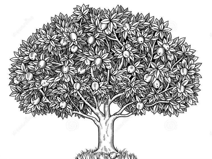 Gambarlah pohon dengan detail