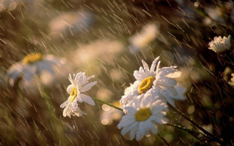 Hujan merupakan anugerah dan berkah