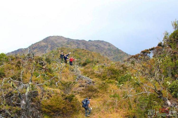 Tracking di kawasan Taman Nasional Gunung Leuser