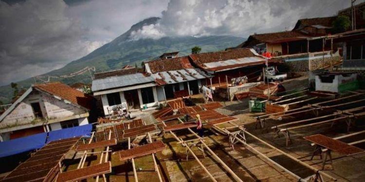 Tembakau menghidupi banyak keluarga di Indonesia