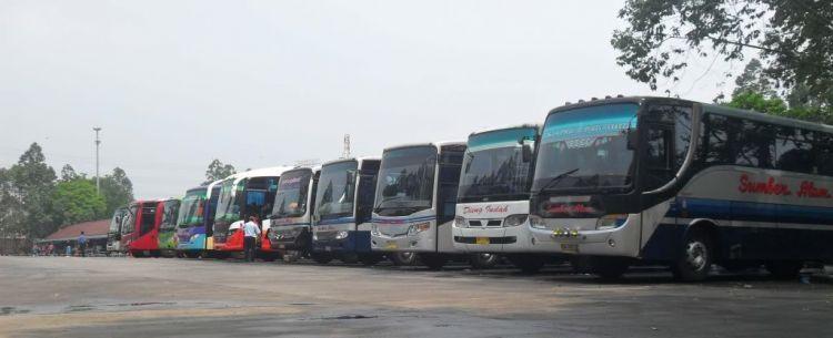 Bisa jadi, tiap pergi kamu menggunakan jasa bus yang berbeda