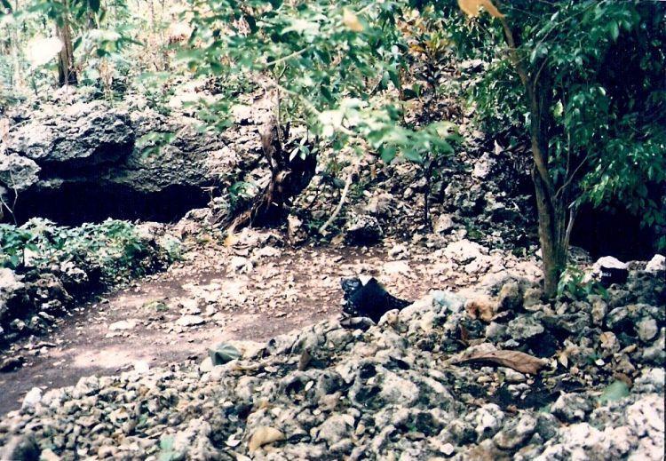 Goa Gunung Wangi