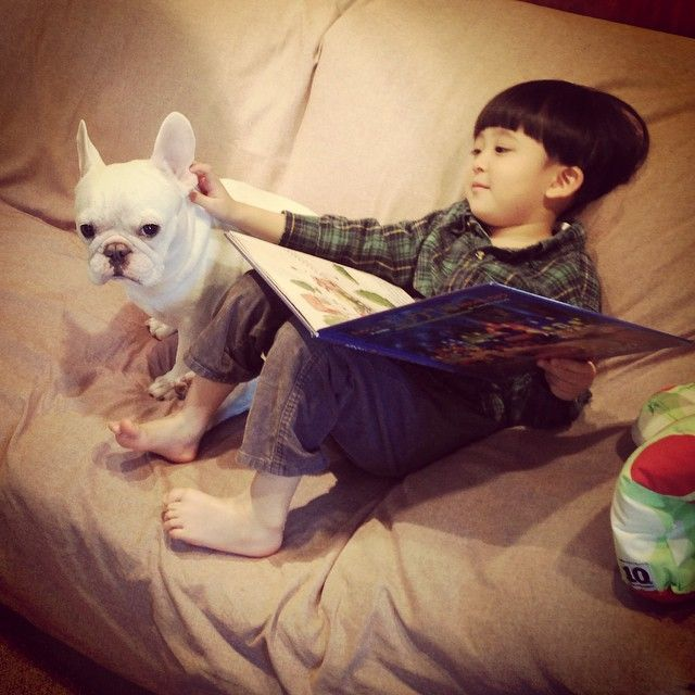 Rasa sayang ke anjingnya sudah seperti ke saudara sendiri