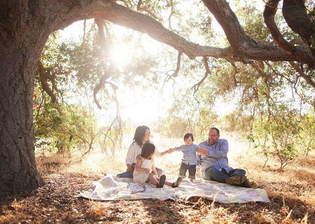 Piknik di bawah pohon
