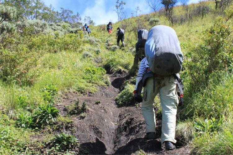Hindari buang air di dekat jalur pendakian