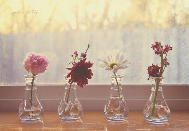 Manfaat garam untuk mengawetkan bunga