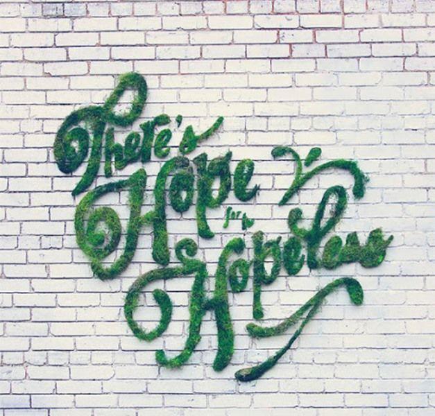 Cara grafiti lumut